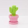 Pedro cactus 🌵