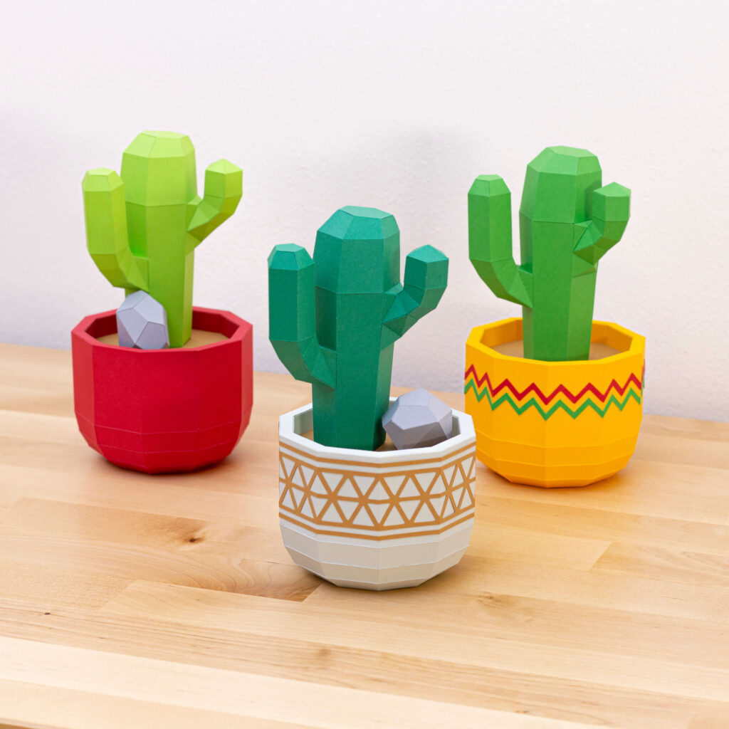 San Pedro cactus in flower pot on desk