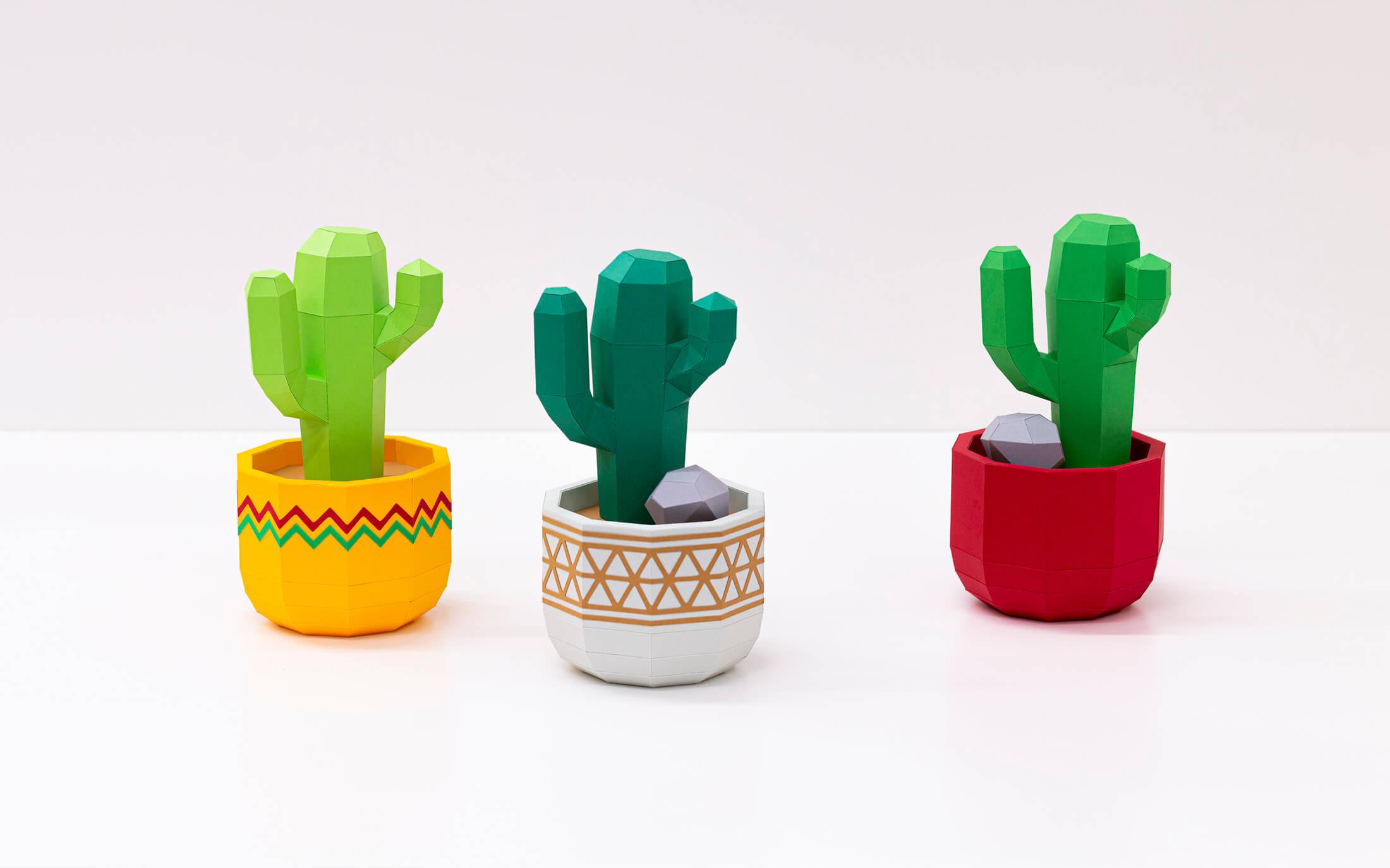 San Pedro cactus in flowerpot wide cover